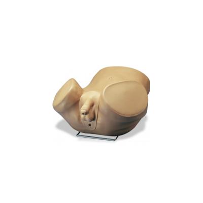 Simulador de exame de prostata