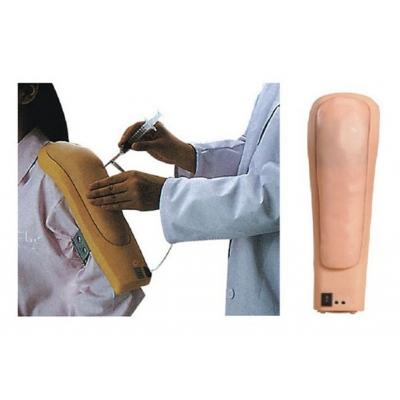 Modelo Eletronico da Parte Superior do Braço para Injeção Intramuscular