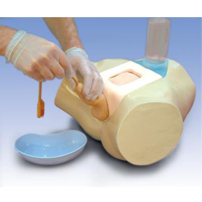 Simulador de Cateterização para o Estudo Clínico – Cateterização Transuretral e Suprapubiana no Homem