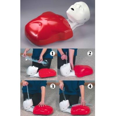 Manequim para Ressuscitação Cardio-Pulmonar - Basic Buddy (individual)