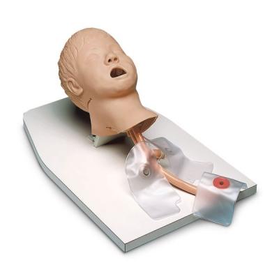 Modelo de Intubação Criança (Airway Management Trainer) com suporte