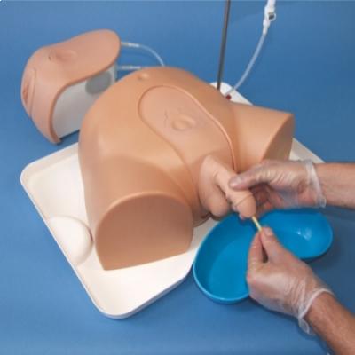 Simulador avançado para cateterismo Masculino/Feminino