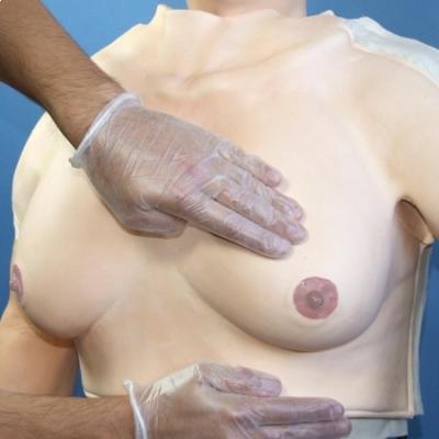 Modelo para exame de mamas para amarrar