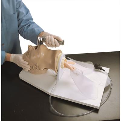 Cabeça para Intubação