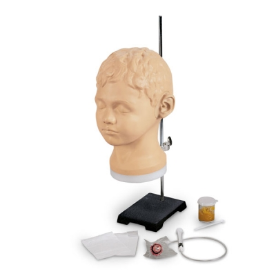 Modelo para diagnóstico e treinamento de ouvido