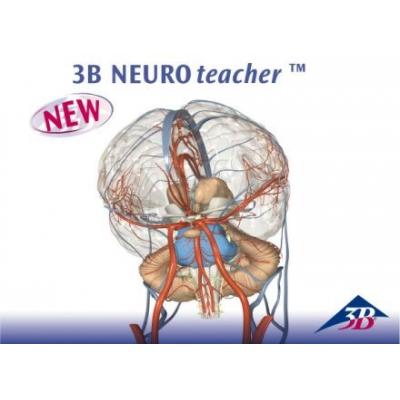 3B NEUROteacher – Licença para Quinze Usuários
