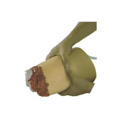 Modelo de Amputação de Membros Inferiores e Hemostasia